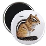 Ground Squirrel Chipmunk Magnet