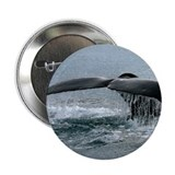 "Whale Fluke 2.25"" Button (100 pack)"