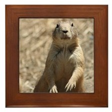 Prairie Dog Framed Tile