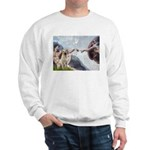 Creation/Labrador (Y) Sweatshirt
