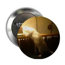 In the light dumbo Rat Button