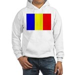 Chad Hooded Sweatshirt
