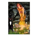 Midsummer / G Dane Postcards (Package of 8)