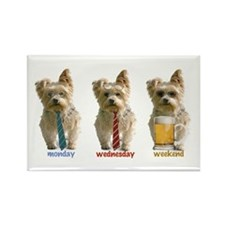 """3 day week"" yorkie Rectangle Magnet"