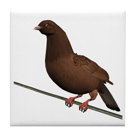 Brown Rock Dove Tile Coaster