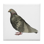 Pigeon Tile Coaster