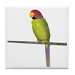 Plumhead Parrot Tile Coaster