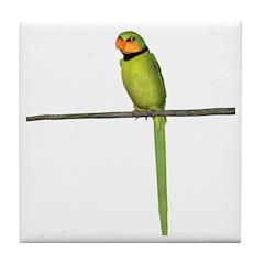 Ring Necked Parakeet Tile Coaster