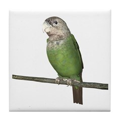 Cape Parrot Tile Coaster