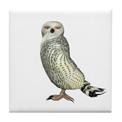 Snow Owl Tile Coaster