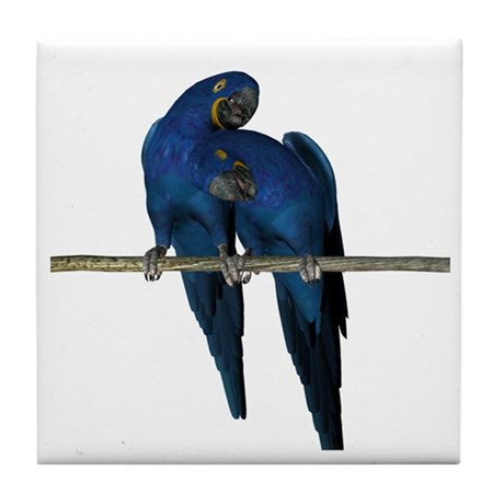 Hyacinth Macaw (Pair) Tile Coaster