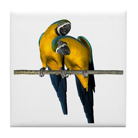 Blue N Yellow Macaw (Pair) Tile Coaster