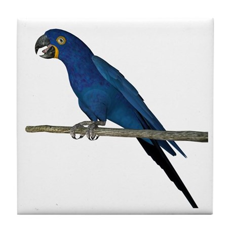 Hyacinth Macaw Tile Coaster