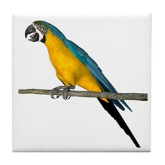 Blue N Yellow Macaw Tile Coaster