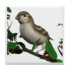 House Sparrow (female) Tile Coaster