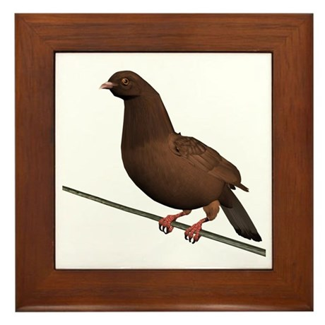 Brown Rock Dove Framed Tile