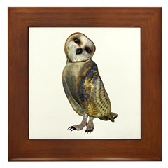 Barn Owl Framed Tile