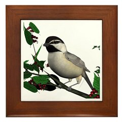 Mountain Chickadee Framed Tile