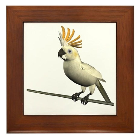 Cockatoo Framed Tile
