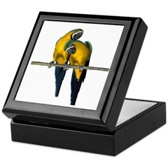 Blue N Yellow Macaw (Pair) Keepsake Box