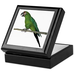 Military Macaw Keepsake Box