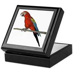 Scarlet Macaw Keepsake Box