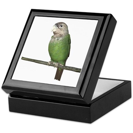 Cape Parrot Keepsake Box