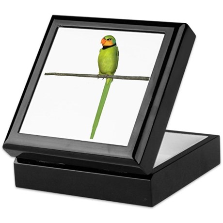 Ring Necked Parakeet Keepsake Box