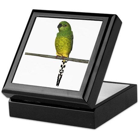 Night Parrot Keepsake Box
