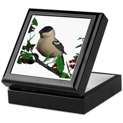 Bullfinch (female) Keepsake Box