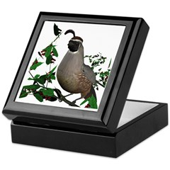 California Quail (male) Keepsake Box
