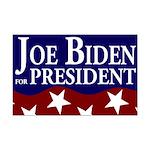 Joe Biden 2008 11x17 Poster Print