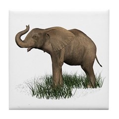 Elephant (baby) Tile Coaster