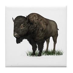 Bison (Buffalo) Tile Coaster