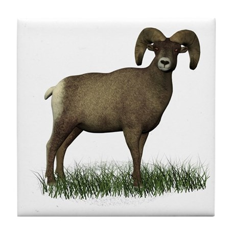 Big Horn Sheep Tile Coaster