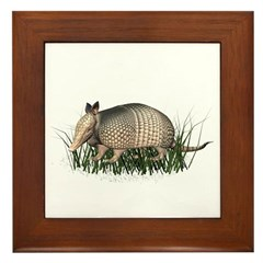 Armadillo Framed Tile