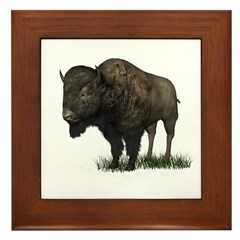 Bison (Buffalo) Framed Tile
