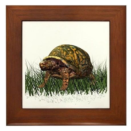 Box Turtle Framed Tile