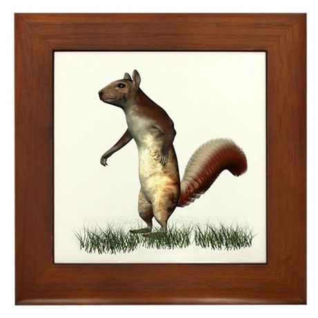 Squirrel Framed Tile