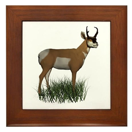 Pronghorn Framed Tile