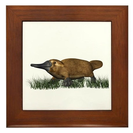 Platypus Framed Tile