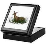 Deer (fawn) Keepsake Box