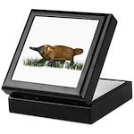 Platypus Keepsake Box