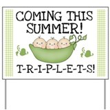 Coming This Summer Triplets Yard Sign