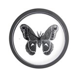cecropia moth Wall Clock