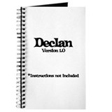 Declan Version 1.0 Journal
