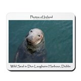 Mousepad WILD IRISH SEAL