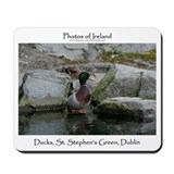 Mousepad DUCKS, ST. STEPHEN'S GREEN