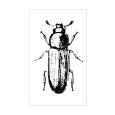 confused beetle Rectangle Decal