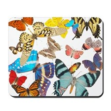 Beautiful Butterflies Mousepad